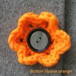2015-10-26-BF002-buttonflower-orange
